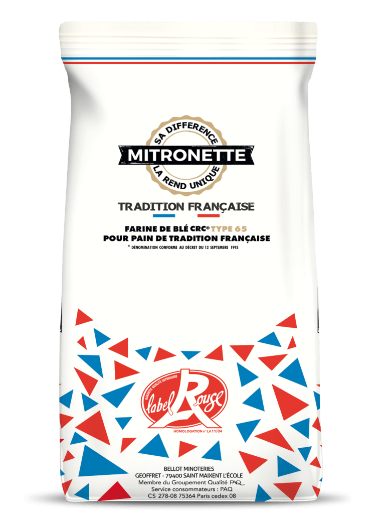 cropped-mock-up-sacs-mitronette-1.png